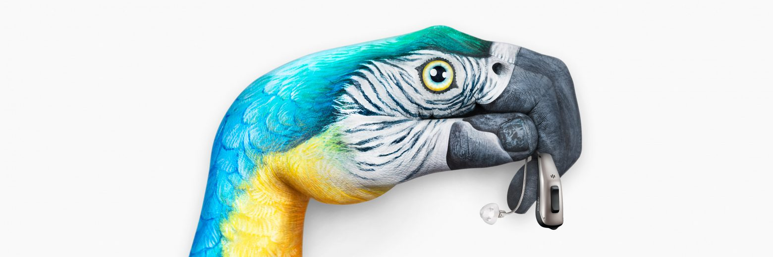 Pure-13-Nx_keyvisual_Parrot_background_3840x1280px-1560x520